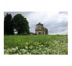 Ressons-l'Abbaye : L'abbaye...